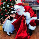 Santa Bearded